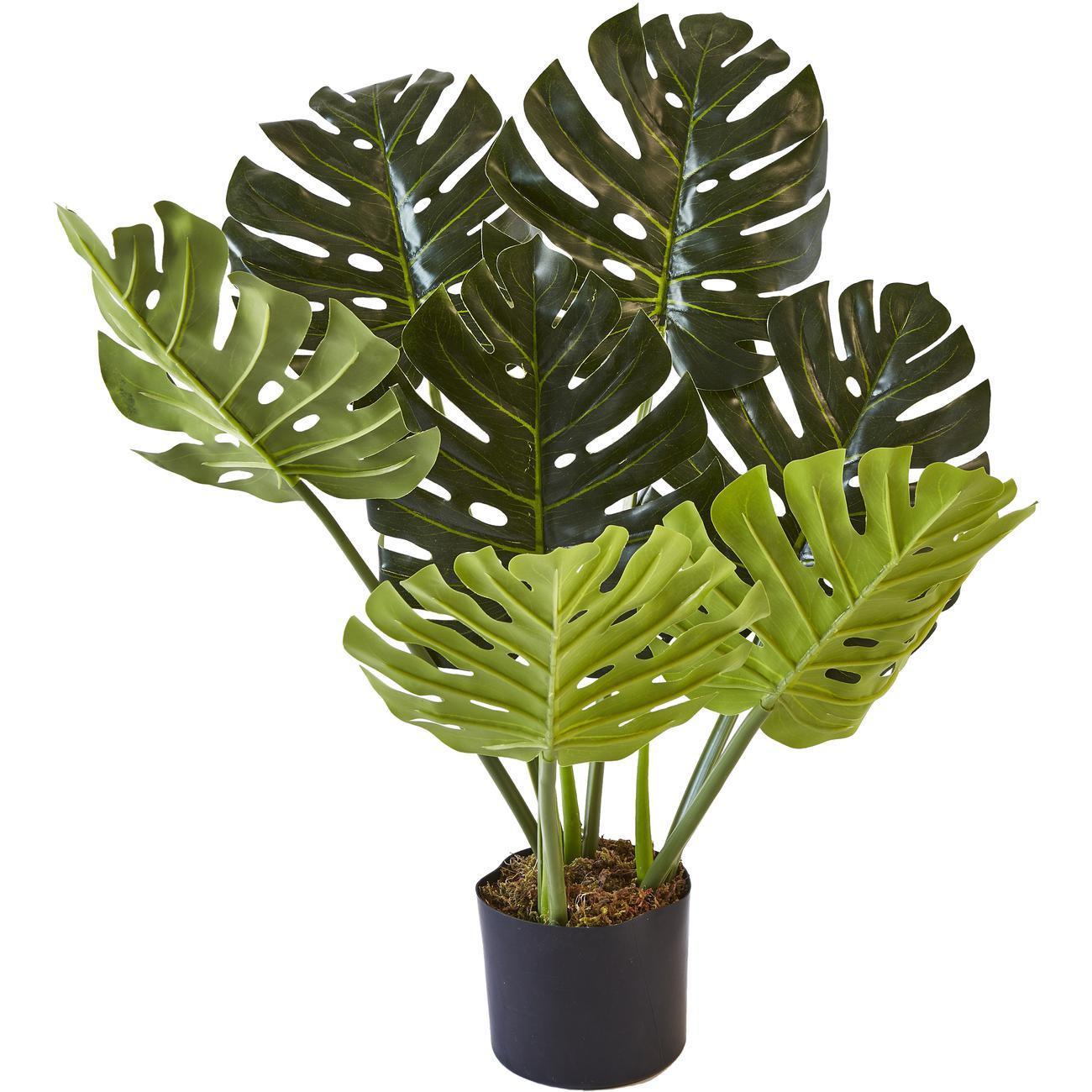 Plante artificielle OLLA 7 feuilles
