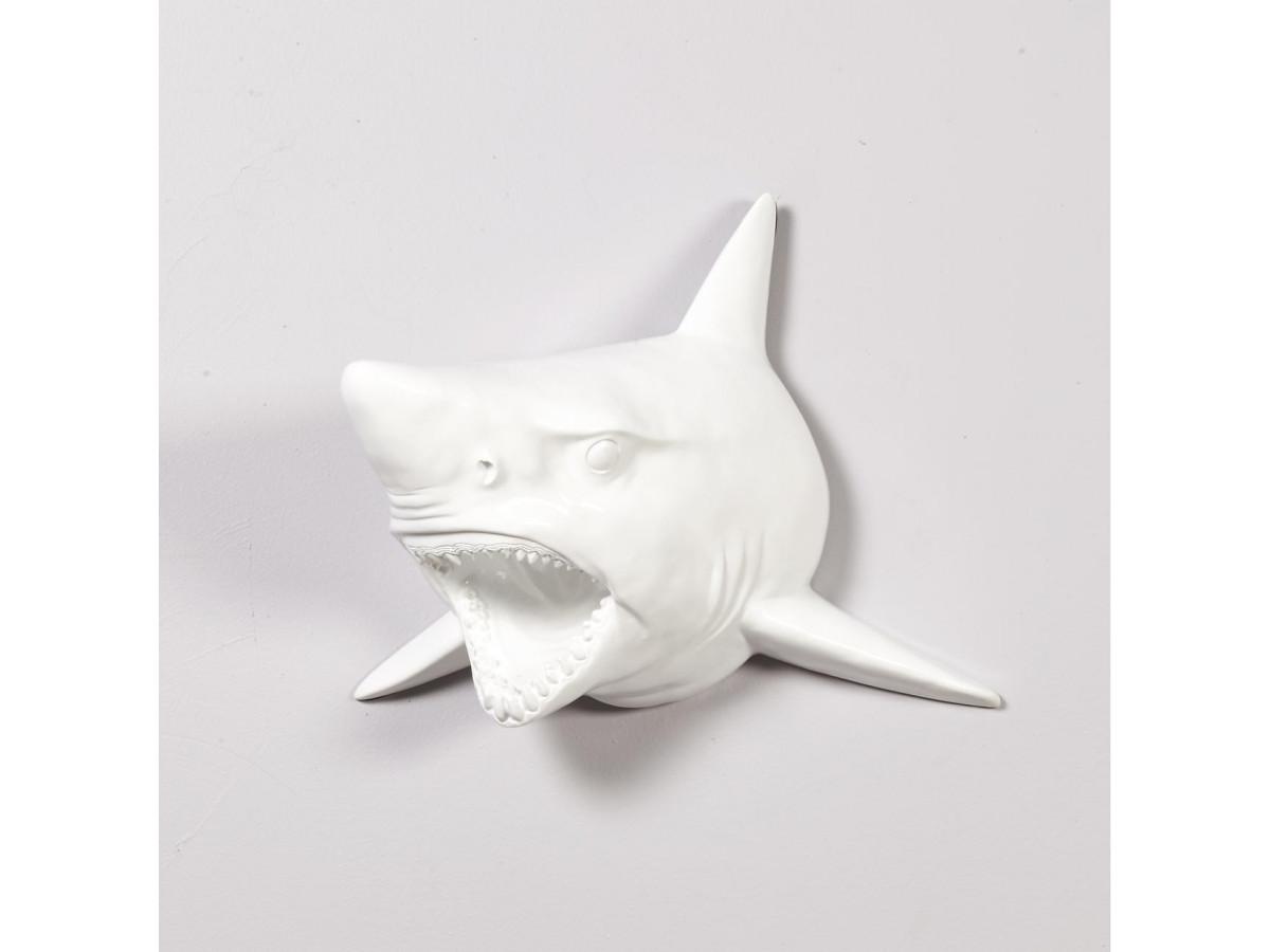Tête de requin Blanc design Yaunti Blanc